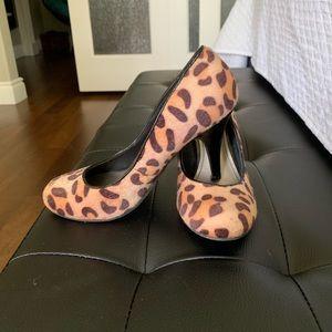 Cheetah pumps